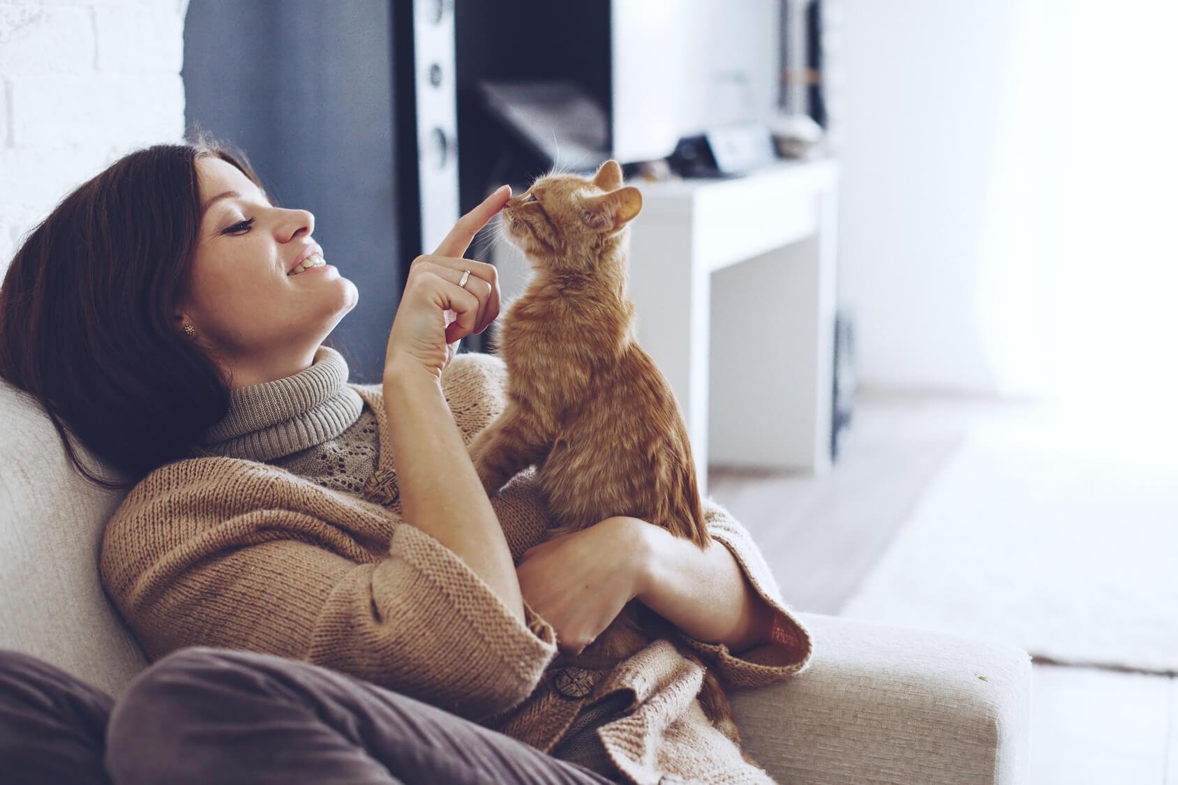 Geruch aus dem Katzenklo